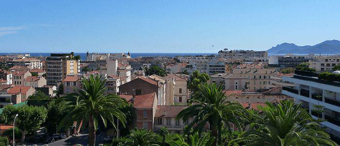 illustration de l'article